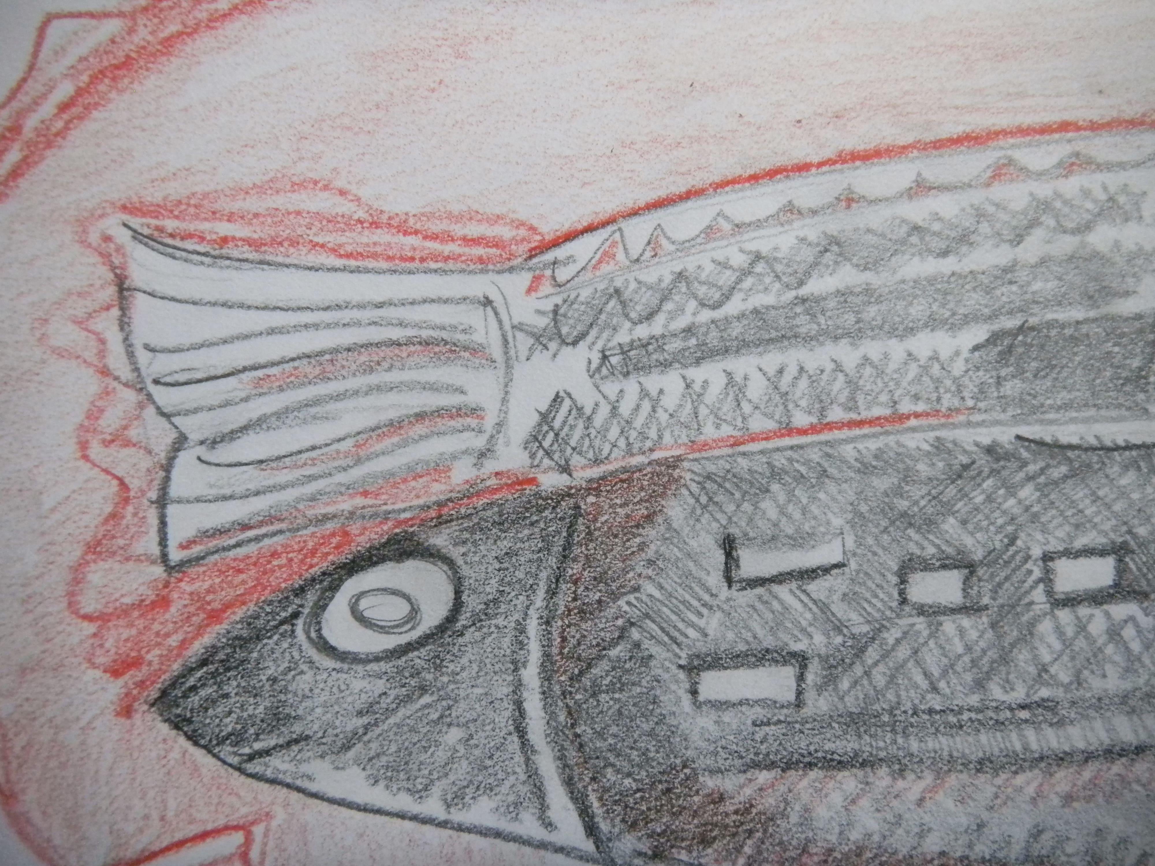 Louise.h peinture détail poisson au crayon